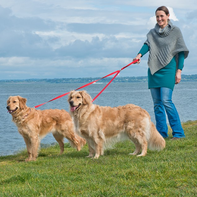 Furhaven Pet Two Tails Walking Double Dog Pet Leash