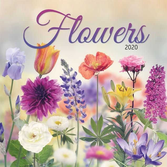 Flowers Wall Calendar, More Flowers by Calendars