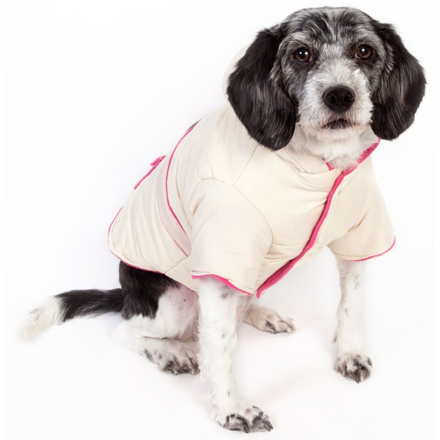 Dual-Toned Trendy Jewel Dog Jacket