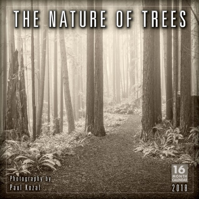 Nature of Trees Wall Calendar, Nature by Calendars