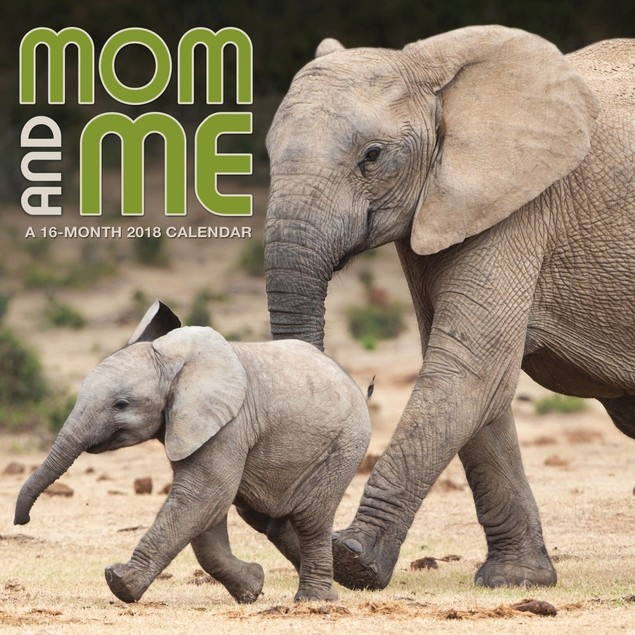 Mom & Me Wall Calendar, Baby Animals by Calendars