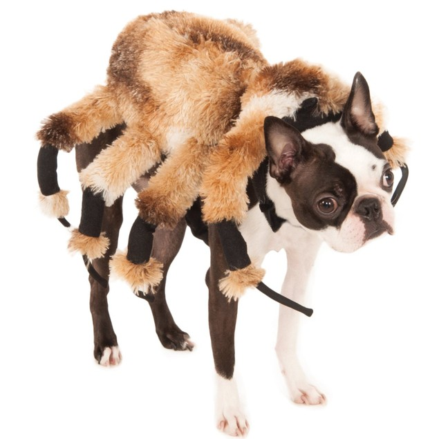 Giant Spider Dog Costume Tarantula Pet Plush 8 Legs Viral Video Arachnid