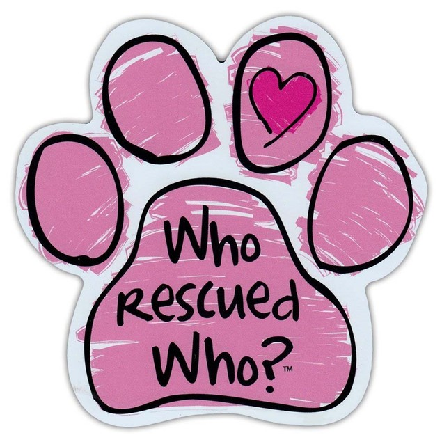 """Pink Who Rescued Who Paw Magnet Dog Cat 5.5"""" x 5.5"""" Shaped Pet Puppy Kitten"""