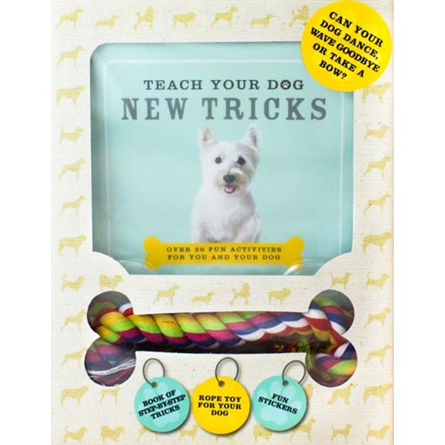 Teach Your Dog New Tricks, Assorted Dogs by Parragon Books