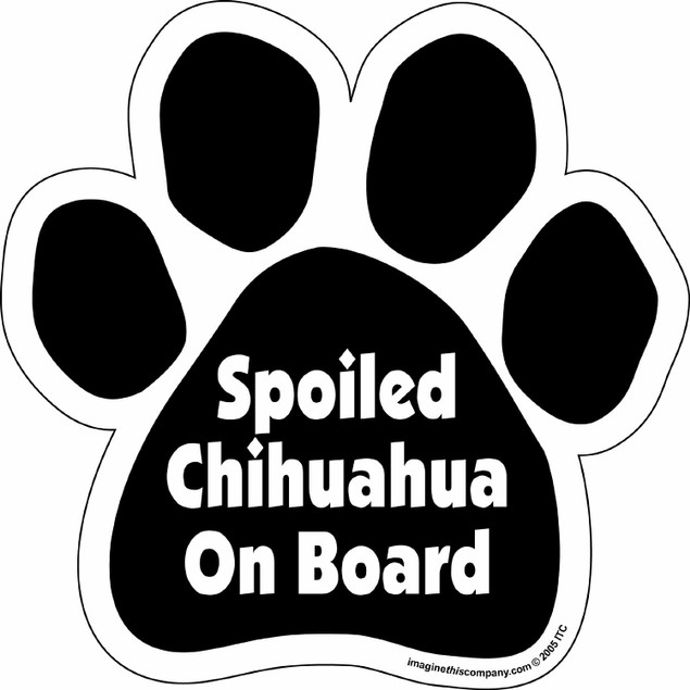 Spoiled Chihuahua On Board Paw Magnet