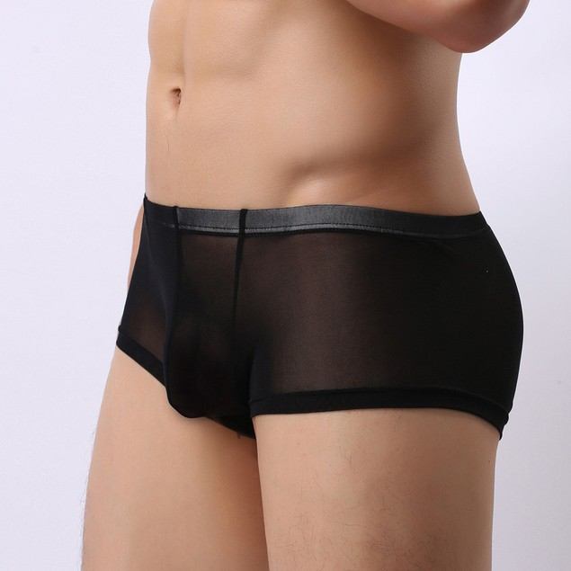 Men Underwear Shorts Underpants Perspective Pouch Soft Briefs Panties G