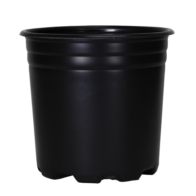 Pro Cal Thermo Pot, 2 gal