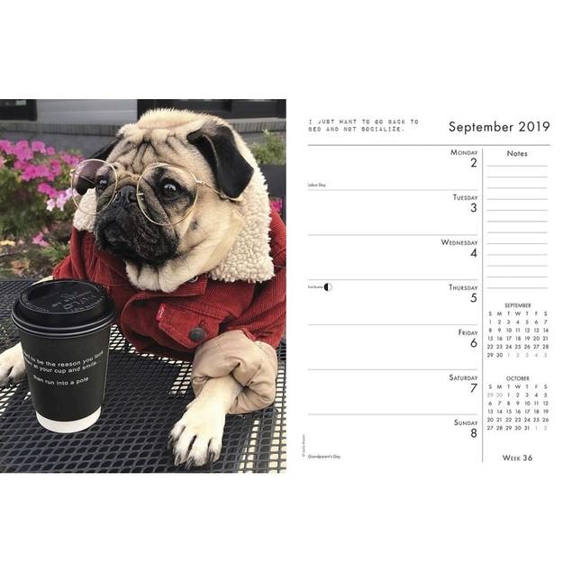 Doug the Pug Planner, Pug by Calendars