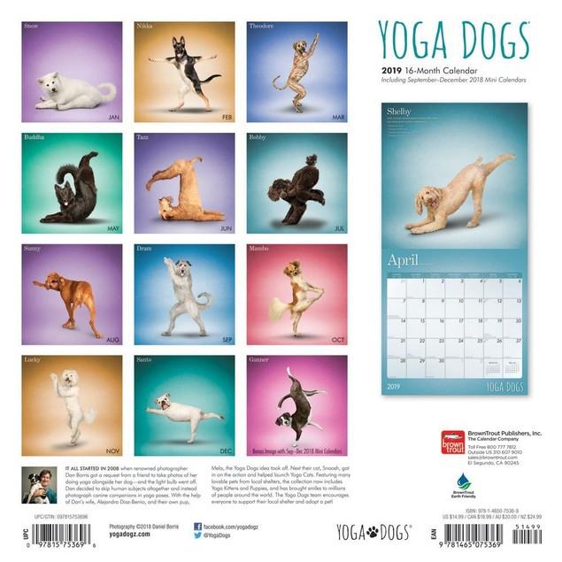 Yoga Dogs Wall Calendar, Funny Dogs by Calendars