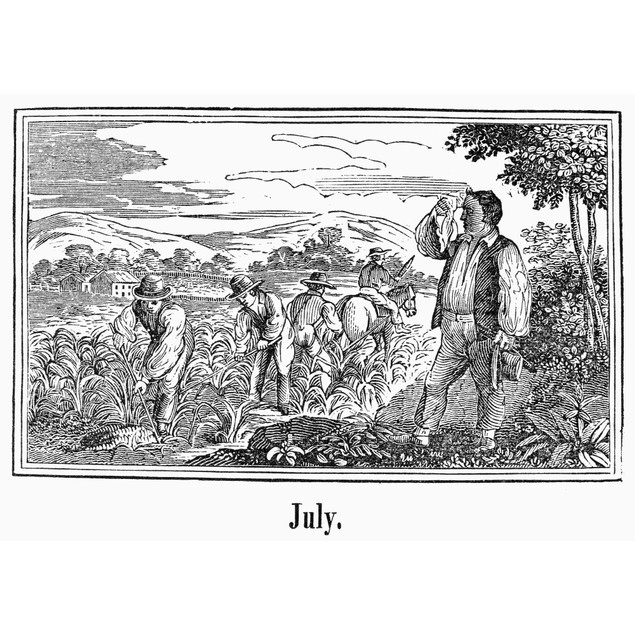 Farmers, 19Th Century. /Nfarmers Working In July. Wood Engraving, American,