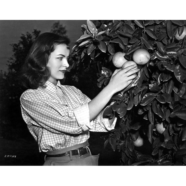 Ella Raines on a Checkered Top and Harvesting an Orange Poster