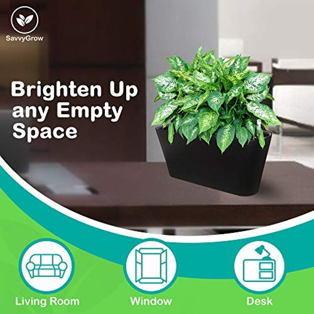 Ergo Self Watering Indoors Outdoors Planter Pot Box Flowers Herbs Container