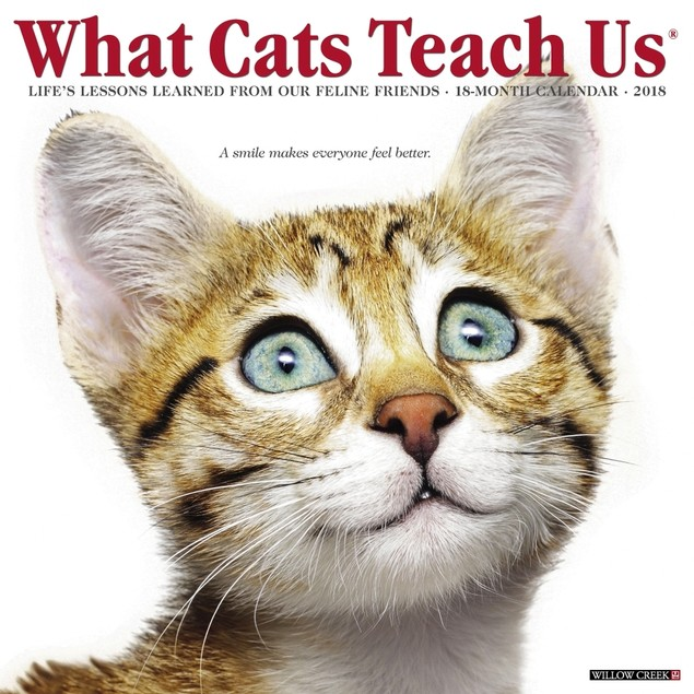 Just What Cats Teach Us Wall Calendar, Assorted Cats by Calendars