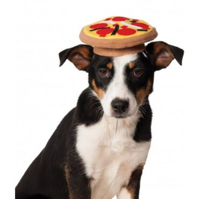 Pet Pizza Hat Funny Cute Dog Cat Costume Halloween Fancy Dress Accessory
