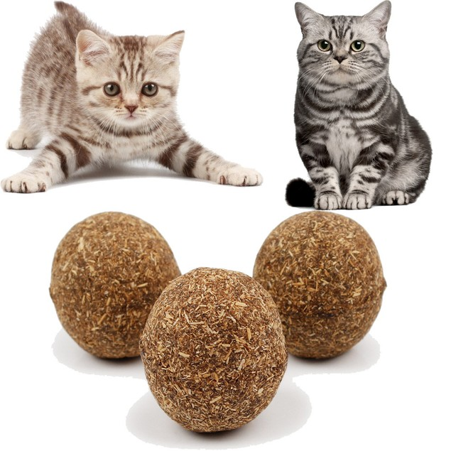 2 Natural Catnip Chewing Play Toy for Cats