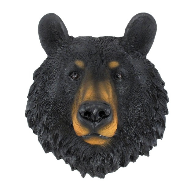 Black Bear Face Mini Bust Wall Hanging Wall Sculptures