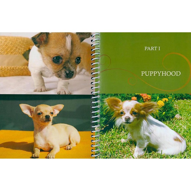 DogLife Chihuahua Book, Chihuahua by TFH Publications