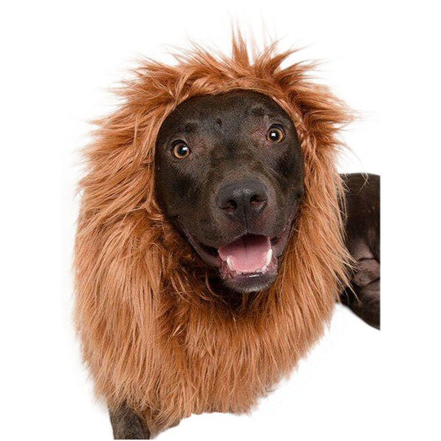 Lion Mane for Big Dogs - by Pet Krewe
