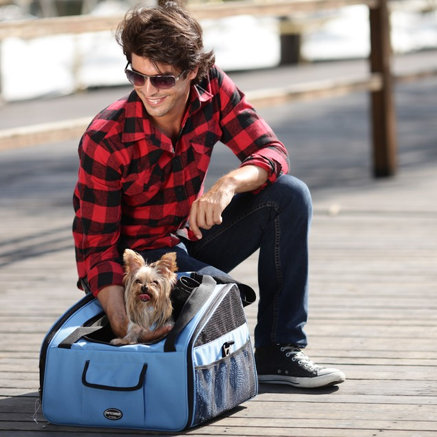 DoggyBoo 2-in-1 Pet Car Seat & Carrier