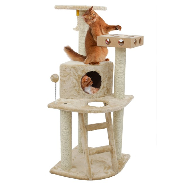 Deluxe Cat Clubhouse with Cat- IQ Busy Box