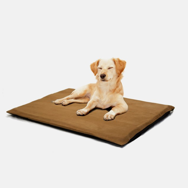 "PAW 2"" Orthopedic Foam Pet Bed - Suede Camel"