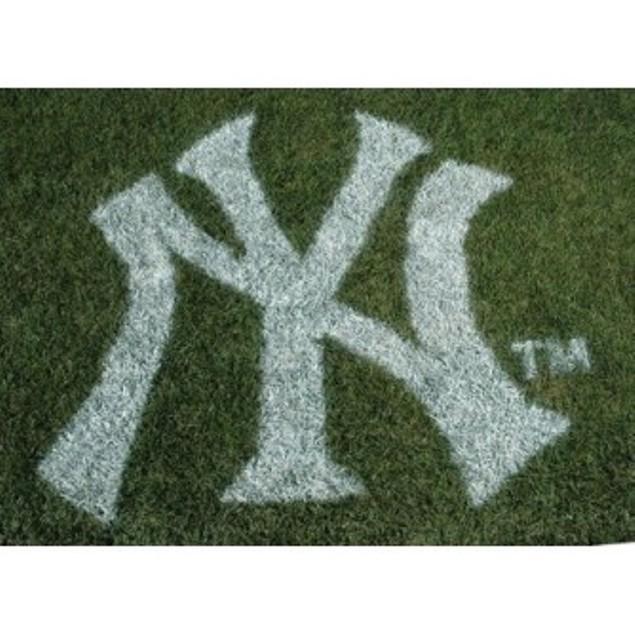 New York Yankees Logo Yard Or Sidewalk Stencil Sports Fan Stepping Stones