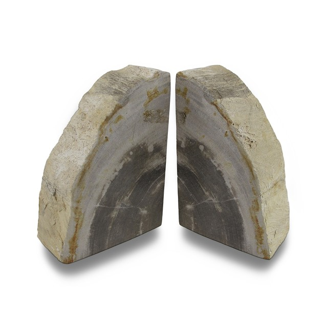 Indonesian Light Colored Petrified Wood Bookends Decorative Bookends