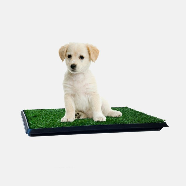 PETMAKER Puppy Potty Trainer