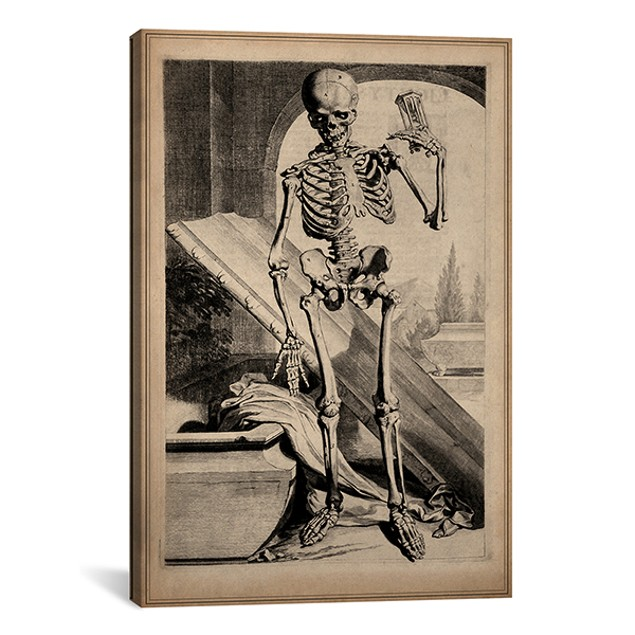 Skeletal Anatomy by Govard Bidloo