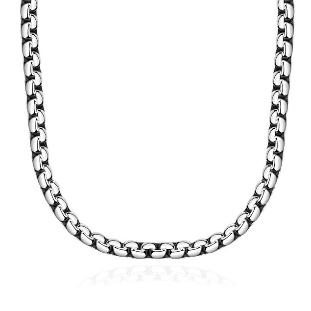 Alpha Steel Classic Paris Chain Stainless Steel Necklace