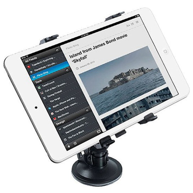 iBasics Home & Auto Remote Tablet Mount