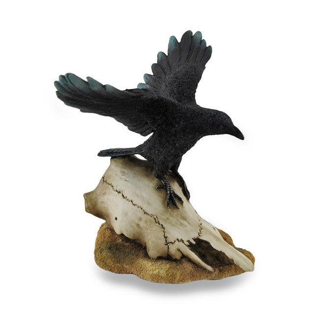 Black Open Winged Crow Perched On Sheep Skull Statues