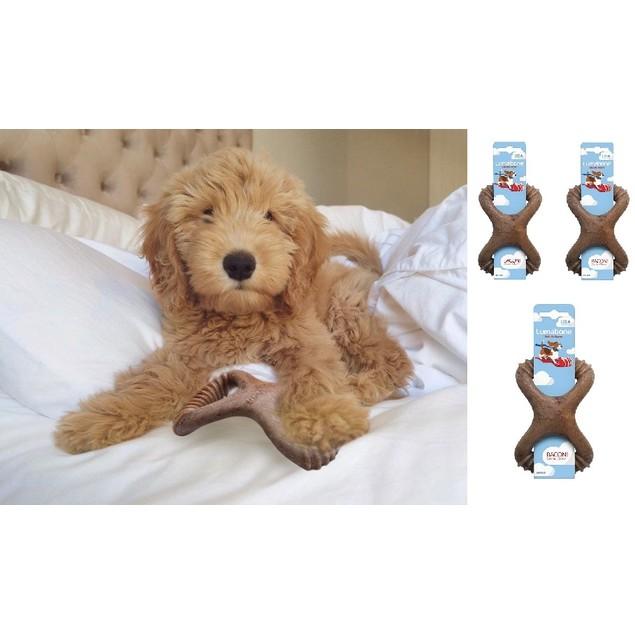 3-Pack Lumabone Small Bacon Dental Dog Chew Toy