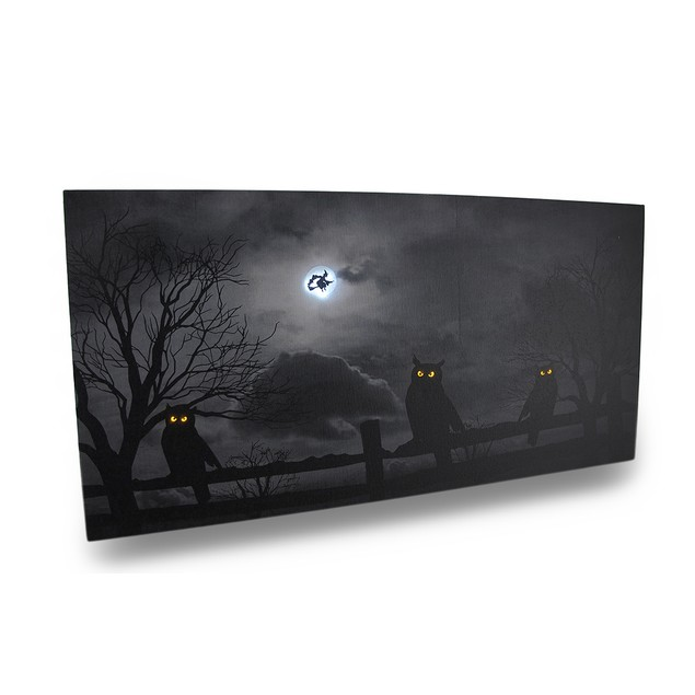 Spooky Black And White Owls Led Lighted Canvas Prints