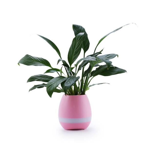 Mini Smart Flower Pot with Bluetooth Speaker