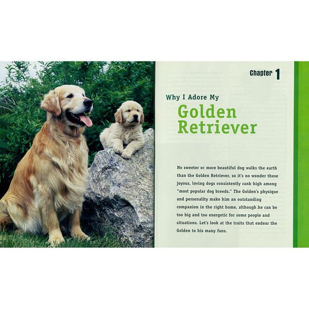 Animal Planet Golden Retrievers Book, Golden Retriever by TFH Publications