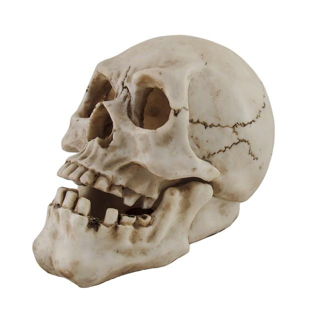 Human Skull Shaped Incense Burner Box Incense Holders